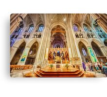 Magnificent Cathedral X Canvas Print