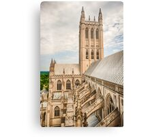 Magnificent Cathedral III Canvas Print