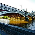 Princes Bridge Melbourne by Tom Newman