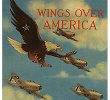 Wings over America by Mil Merchant