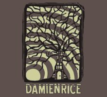 Damien Rice by Chewiebacca