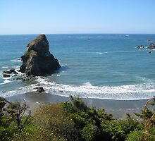 Southern Oregon Coast View by rke3