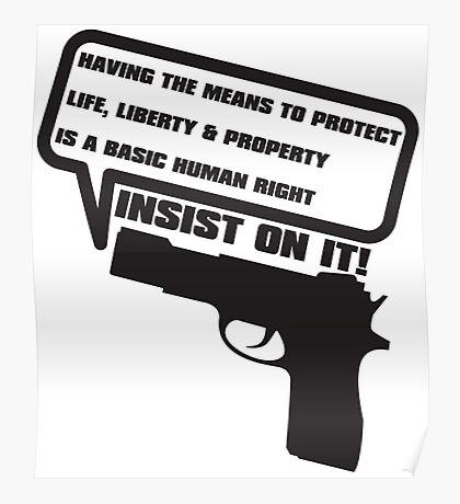 GUN_LAWS Poster
