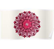 Lovely Pink Mandala Illustration Poster