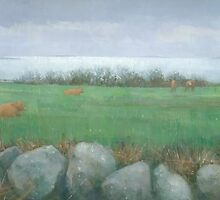 Tresco Cows by Stephen Mitchell