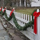 Xmas Fence by Kenneth Hoffman