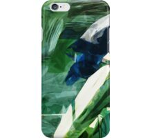 Pigeons On Boston Pier Abstract Impressionism iPhone Case/Skin