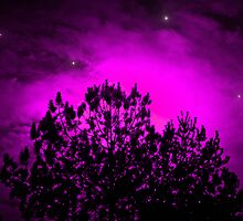 Purple Stars Pine Sun by Roses1973