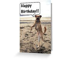 Happy Dog - Happy Birthday Greeting Card