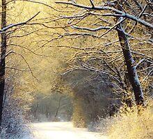 Early Winter Sunrise by lorilee