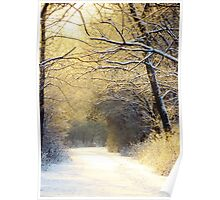 Early Winter Sunrise Poster