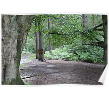 Trees and Trail Sign Poster