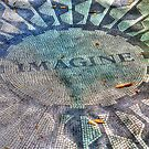 Imagine, New York Central Park  by Michele Ford