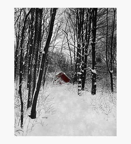 Follow The Snowflake Trail Photographic Print