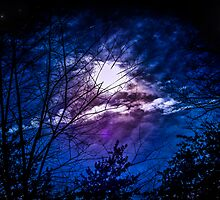 Blue Moon Universe by Roses1973