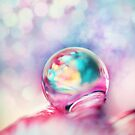 A Drop of Fun by Sharon Johnstone