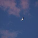 Crescent Moon with Pink Clouds by Michele Ford