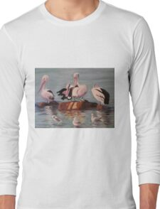 Pelicans and Seagulls at the Beach Long Sleeve T-Shirt