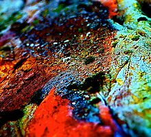 Rock Abstract/redman by Julie Marks