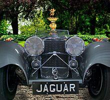 Garden Jaguar by barkeypf