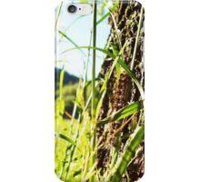 Caterpillar Case  iPhone Case/Skin