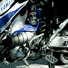 Yamaha by Front Quarter Window