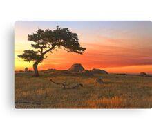 SUNSET AT DOG ROCKS Canvas Print