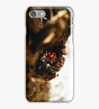 miss lady bug iPhone Case/Skin