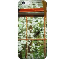 window view iPhone Case/Skin