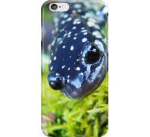 Little Blue Lizard iPhone Case/Skin