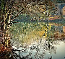 Reflecting Winter by naturelover