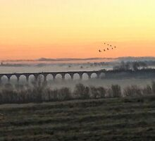 Early mist around Twyford Viaduct by Barry Thomas