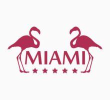 Miami Flamingo Stars Logo by Style-O-Mat