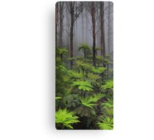 The tallest flowering trees in the world. Mountain ash    Canvas Print