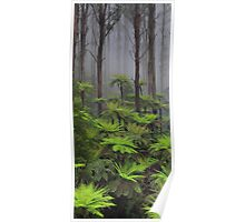 The tallest flowering trees in the world. Mountain ash    Poster