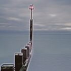 Bournemouth Old Groyne by delros