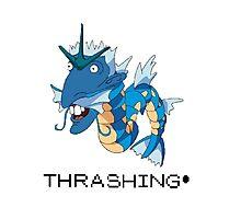 Thrashing! Nigeldos Photographic Print