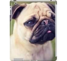 Cute Pug *PROCEEDS TO CHARITY* iPad Case/Skin