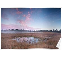 Cold autumn sunrise Poster