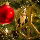 Peace Santa by Mikell Herrick