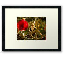 Peace Santa Framed Print