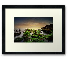 Hidden Nature II Framed Print