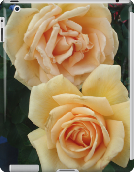 Yellow Roses by Lisa Klement