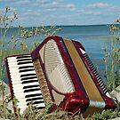 Red Accordion by Diane  Kramer