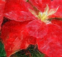 Mottled Red Poinsettia 1 Ephemeral Sketchy by Christopher Johnson