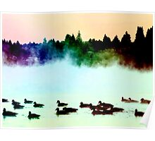 Ducks in the Mist Poster