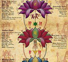 Characteristics of Chakras by satyakam