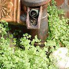 Old Water Pump  by KirstyJSwinger