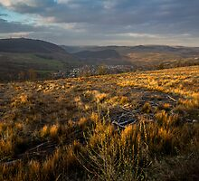 Golden Hills by digihill