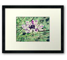 PANTONE - FLOWER #076 Framed Print